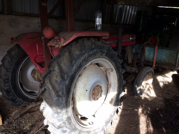 Massey Ferguson 165 for sale